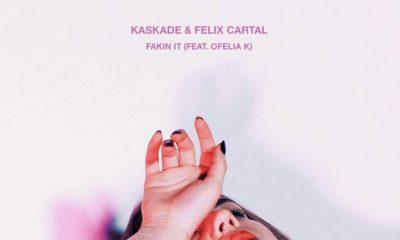 kaskade-felix-cartal-Fakin-It-cover-fb